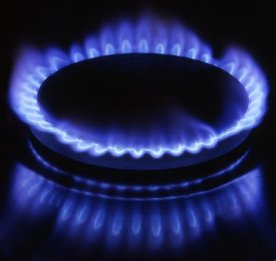 Gas natural energ as renovables y biocombustibles for Portal del instalador de gas natural